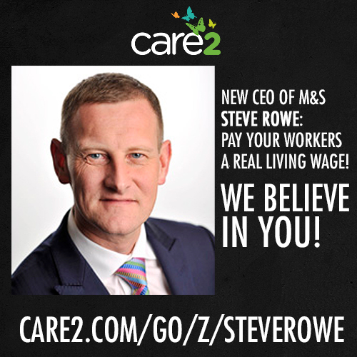 Meet Steve Rowe, the new CEO of Marks and Spencer